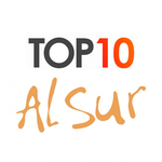 Топ 10 вкусов Al Sur